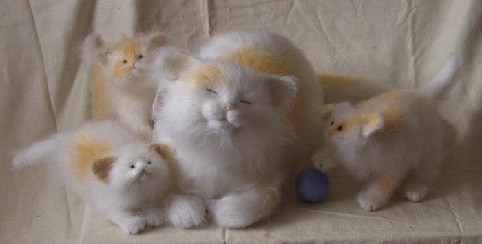 Загрузок: 23 Добавил: prettytoys Дата.  Кошки, Коты, Котята.