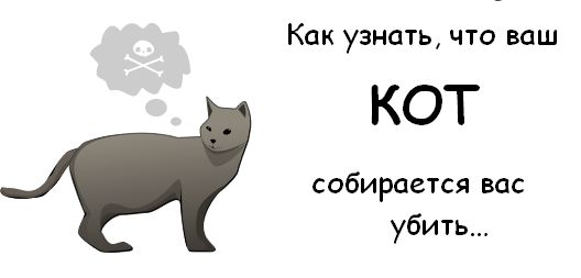 cat_01 (528x253, 13Kb)