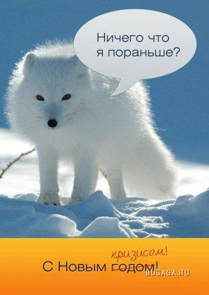 1226851690_funny-pix-058 (297x420, 21Kb)