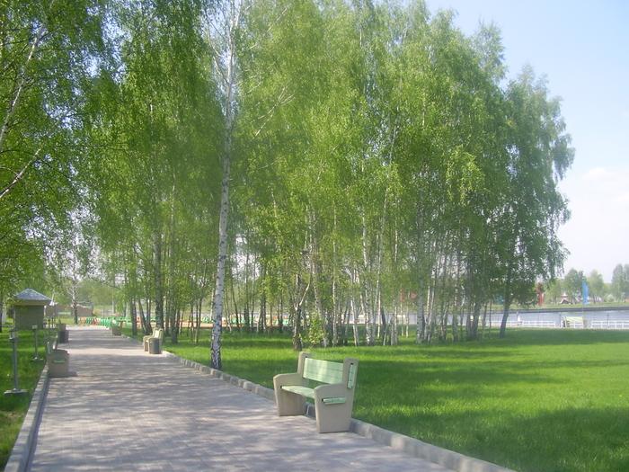 Клуб Водник Березовая роща VIP отдых в Подмосковье 991-57-25