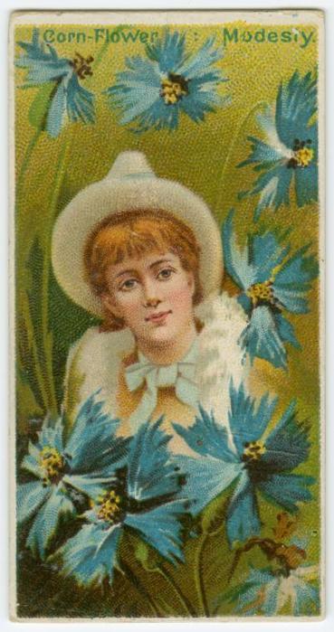"""предпросмотр. таблица цветов. схема. enhitrova.  0. Размеры: 100 x 190 крестов.  Картинки.  Автор схемы  """"Василек."""