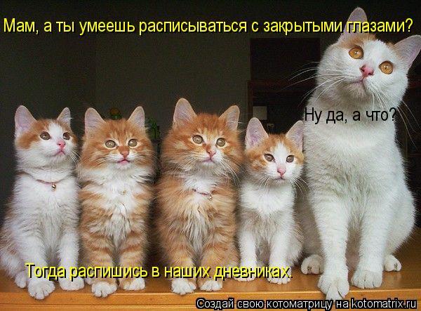 открытки для поднятия настроения: