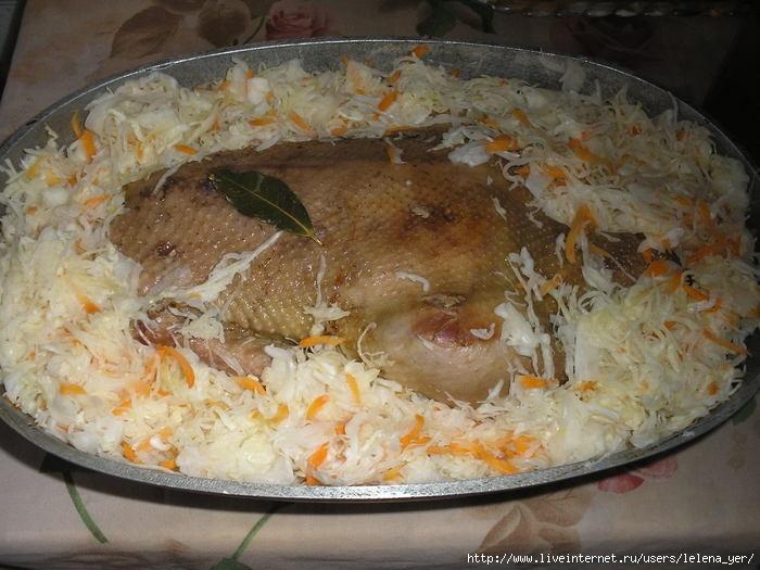 Блюда из дикого гуся рецепты с фото
