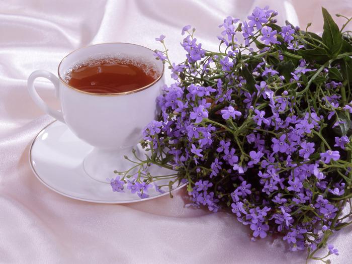 23381998_1208917725_Tea_10011 (700x525, 148Kb)