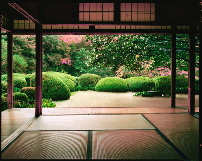 Японский сад, подборка фотографий японского сада,