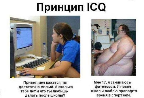 Принцип_ICQ (500x339, 89Kb)