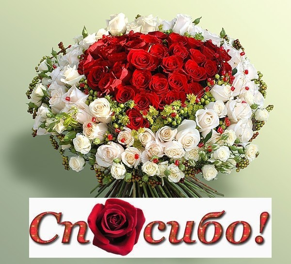 http://img1.liveinternet.ru/images/attach/c/0/39/301/39301472_89087a50308d.jpg