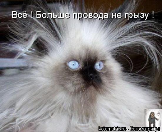 http://img1.liveinternet.ru/images/attach/c/0/39/610/39610642_sA.jpg