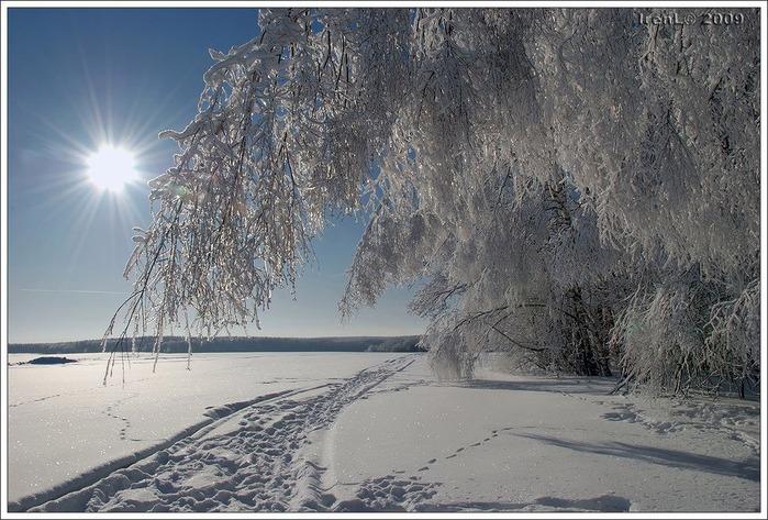 Зимнее Солнце Скачать Торрент - фото 2