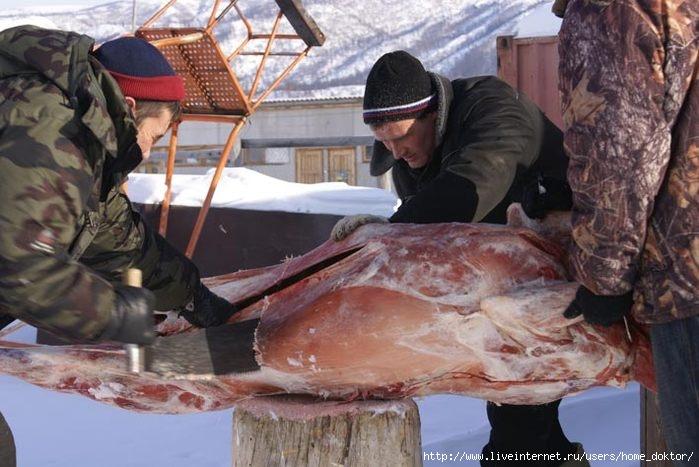http://img1.liveinternet.ru/images/attach/c/0/39/814/39814774_Pilyatmyaso.jpg