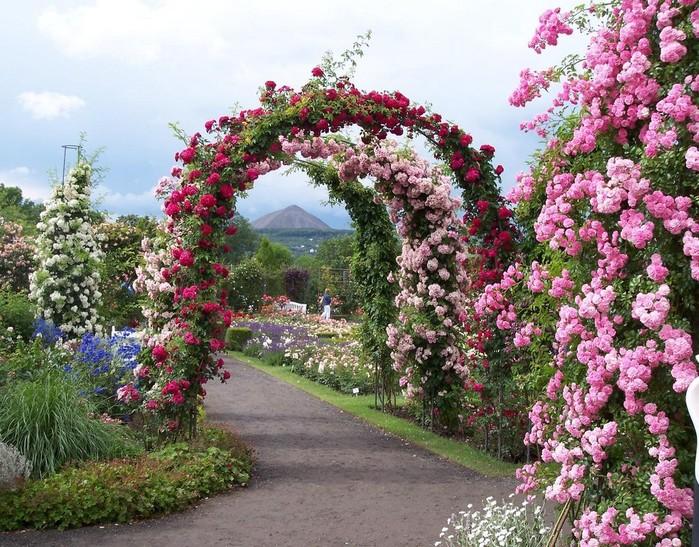 Пройтись под арками из роз и насладиться видом живописных речушек, прозрачным озером, мостиками.