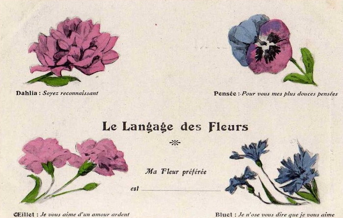 Язык цветов старинные открытки 30