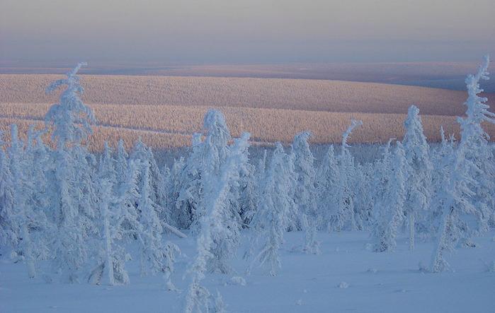 Пейзажи крайнего севера природа зимой