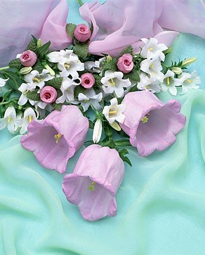 flower015 (402x500, 38Kb)