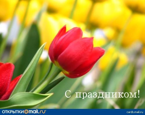 http://img1.liveinternet.ru/images/attach/c/0/40/695/40695575_9b876425be60a5b9092b7221874afba8.jpg