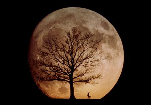 http://img1.liveinternet.ru/images/attach/c/0/40/776/40776031_439598_82380_moonman.jpg