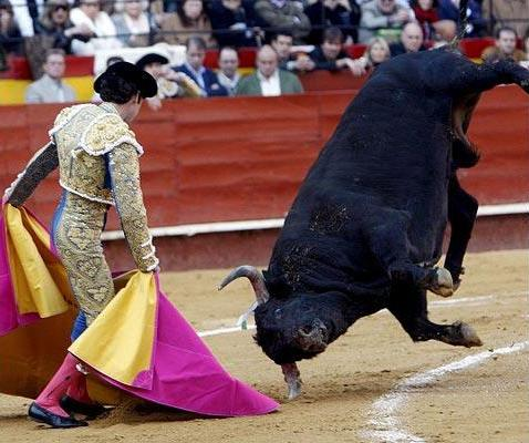 Фальяс фестиваль в Валенсии