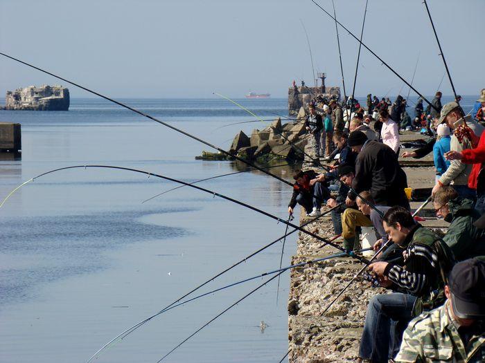 ловля лосося в балтийске видео