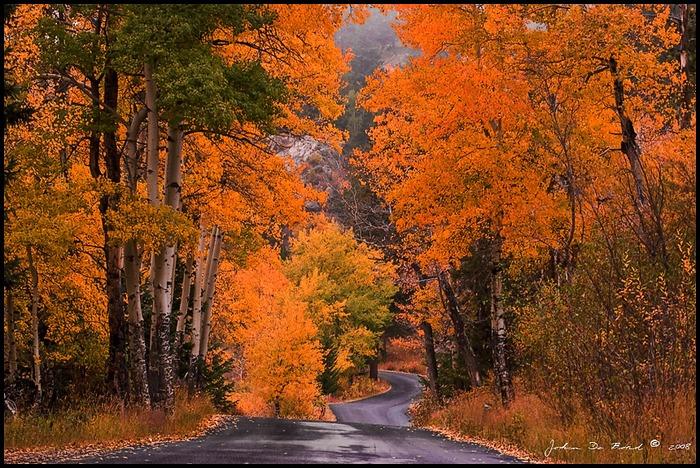 Тебе осень яркие пейзажи природы