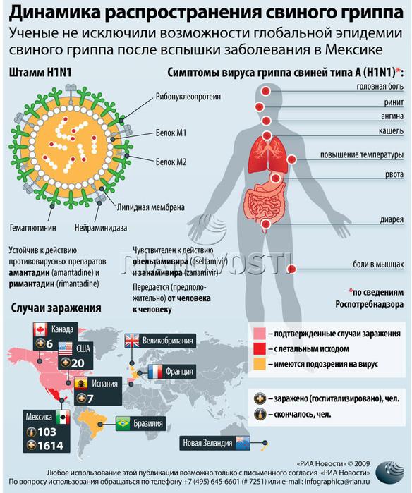 Вирус h1n1 как лечить 152