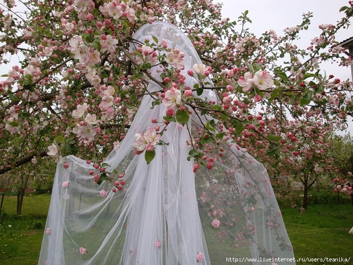 Рассказ яблоневый цвет