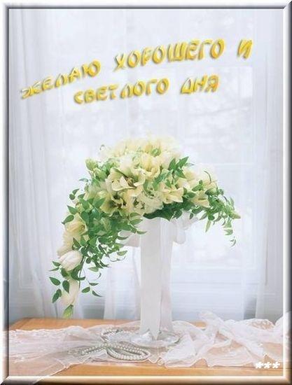 http://img1.liveinternet.ru/images/attach/c/0/44/637/44637703_39893954_809f009463ec.jpg
