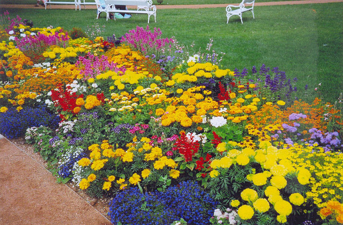 схемы цветников и клумб.