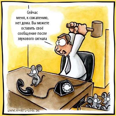 грузин ебет осла: