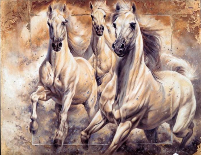 Лошади.  Janice Darr Cua.
