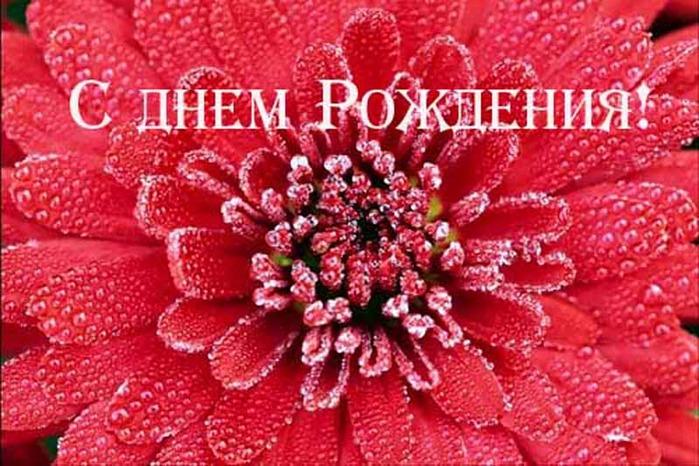 47273758_Den_rozhdeniya_08.jpg