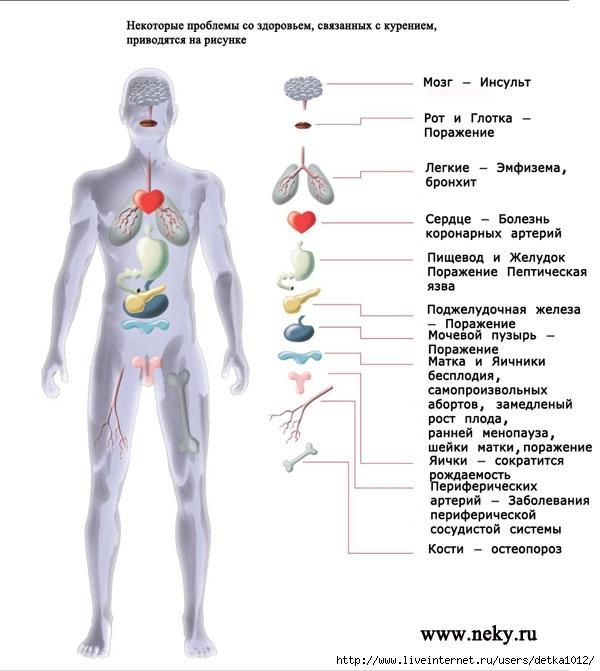 Картинки курящего и некурящего человека 1