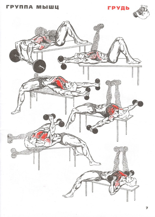 Как в домашних условиях на качать мышцы груди