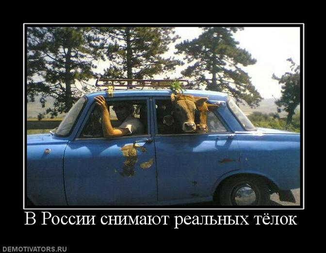 Снимают русскую телку на улицах россии 14 фотография