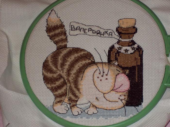Кошачий наркотик