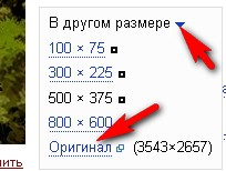 (204x154, 13Kb)