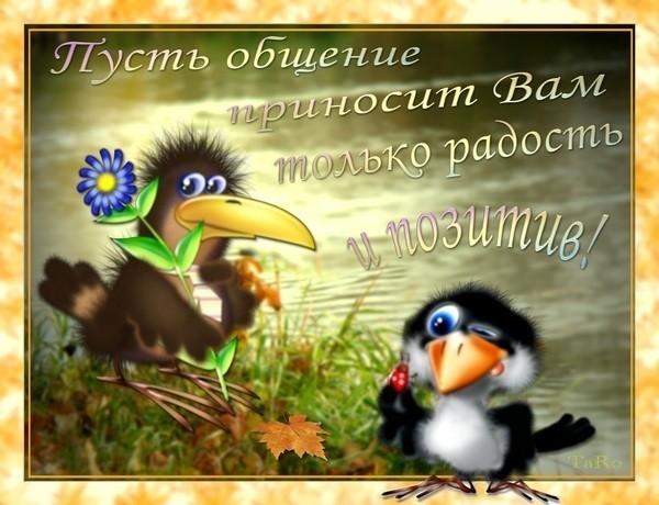 44980713_9582 (600x460, 80Kb)