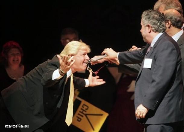 Шнобелевская премия 2009