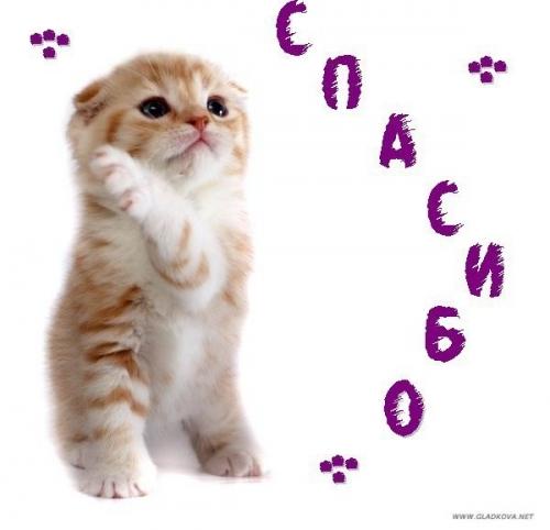 003_cats_000-web (500x482, 111Kb)