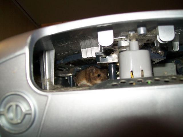 Мышь в системном блоке