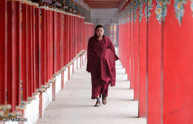 Тибетские монахи монастыря Longwu