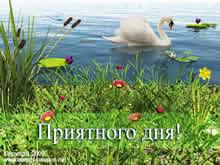 swan-nice-day-russkij-1 (220x165, 9Kb)