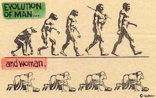 эволюция мужчин, эволюция женщин