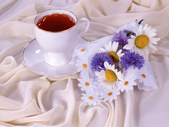 23382004_1208918509_Tea_10151 (700x525, 99Kb)