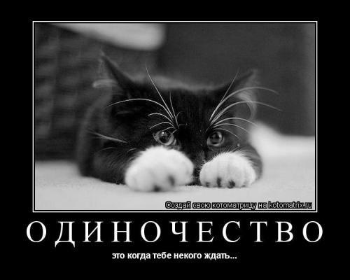 http://img1.liveinternet.ru/images/attach/c/1//51/134/51134602_43292998.jpg