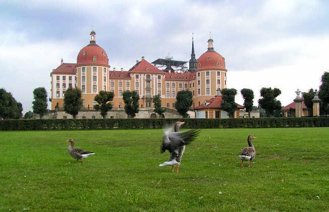Замок Морицбург (Schloss Moritzburg)-часть 3 84881