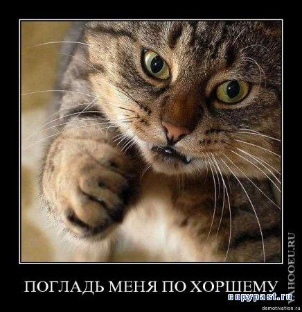 http://img1.liveinternet.ru/images/attach/c/1//54/129/54129870_1242049639_1241979608_b3io6h5h56mw.jpg