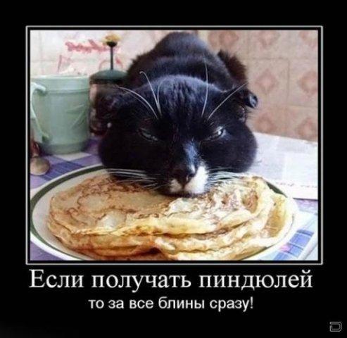 http://img1.liveinternet.ru/images/attach/c/1//54/129/54129982_19e31440e81b.jpg