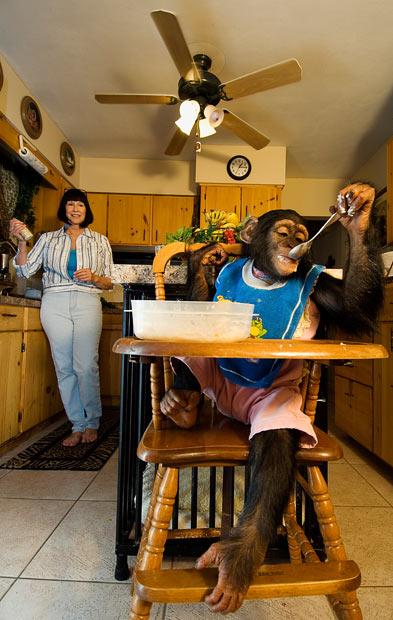 Экзотика в доме: съемка Дэвида Уайт (David White)