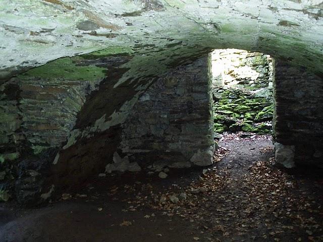 Монастырский парк Альтцелла (нем. Klosterpark Altzella) 14262