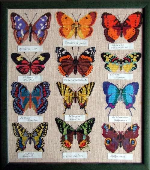 "Схема вышивки ""Бабочки""."